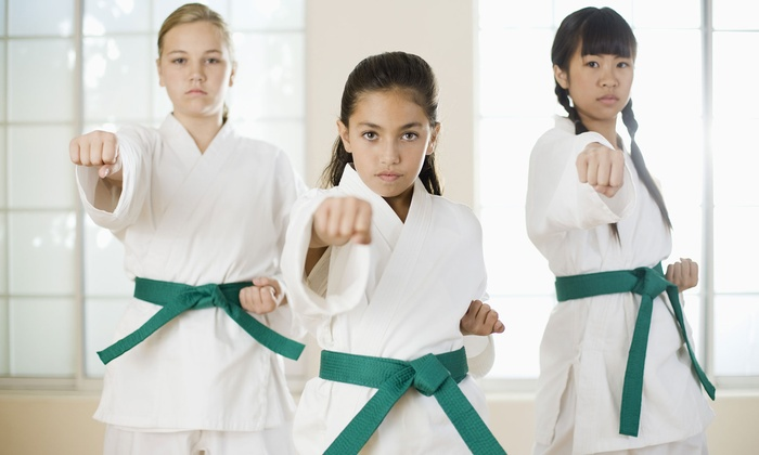 The 1-2 Punch: Family Martial Arts & Fitness Center - The 1-2 Punch Family Martial Arts: Three or Six Weeks of Martial Arts Classes at The 1-2 Punch Family Martial Arts & Fitness Center (Up to 82% Off)