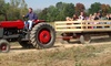 Blooms and Berries Farm Market - Loveland: $9.99 for Two All-Day Passes for Corn Maze, Hay-Rides, and Family Activities at Blooms & Berries Farm Market ($18 Value)