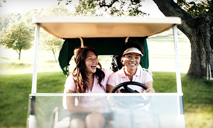 Champion Golf Clubs - Bolingbrook: Champion Hybrid Club, Putter, or Driver and 18-Hole Round of Golf with Cart at Bolingbrook Golf Club (Up to 80% Off)