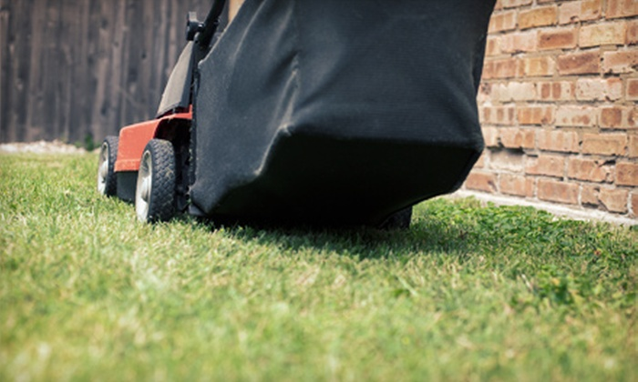 Lawn Love - San Diego: Two or Four One-Hour Lawn Maintenance Packages at Lawn Love (Up to 52% Off)