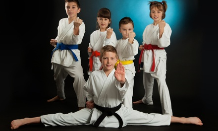 $39 for $129 Worth of 1 Month of Unlimited Classes at Mana Martial Arts