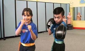 Princeton Academy of Martial Arts: Up to 83% Off Kid's Martial Arts at Princeton Academy of Martial Arts