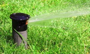 The Irrigation Handyman: $50 for $99 Groupon — The Irrigation Handyman