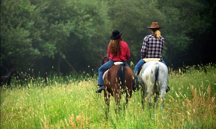 Winding River Stables - Hampden: $14 for $25 Worth of Services at Winding River Stables