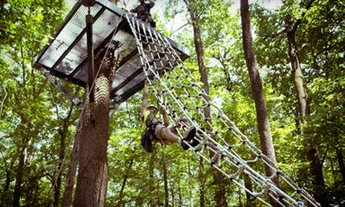 Spring Mountain Adventures - Spring Mount: Zipline Canopy Tour for One or Two at Spring Mountain Adventures (Up to 53% Off). Four Options Available.