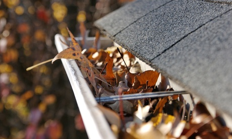 Gutter Cleaning for a One- or Two-Story Home from Amy's Janitorial Supply (Up to 50% Off)