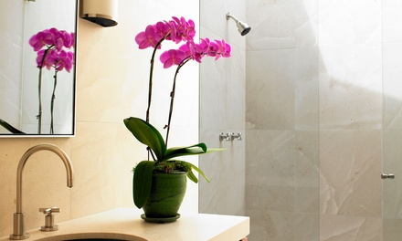 Complete Bathroom Demolition and Remodel from MLV Construction (Up to 50% Off)
