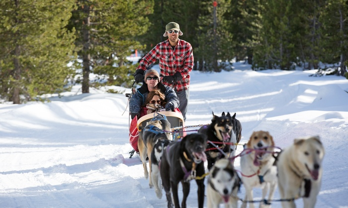 Oregon Trail of Dreams Sled Dog Rides - Deschutes River Woods: Hour of Dogsledding for One, Two or Four, or 26-Mile Dogsledding Trip for Two at Mt. Bachelor (Up to 48% Off)