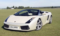 Lamborghini Gallardo Driving Experience: Three or Six Laps with Experience Limits