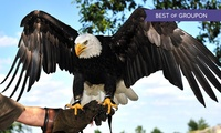 Eagle Heights Animal Sanctuary: Entry for One or Two