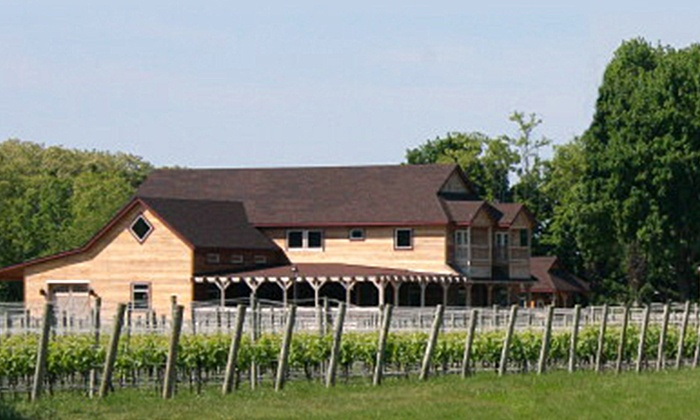 Jason's Vineyard - Jamesport: Wine and Cheese Tastings for Two or Four at Jason's Vineyard (Up to 49% Off)