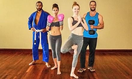 10 or 20 Day Passes, or One Month Unlimited Membership to Bodyfit (Up to 81% Off)
