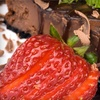 Up to 57% Off at Cheesecake Amor Cafe & Wine Bar