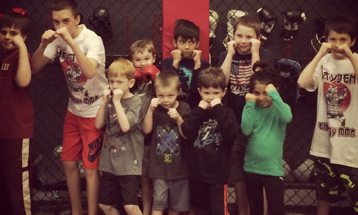 Energy Mma And Fitness - Lakemoor: $30 for $85 Worth of Martial-Arts Lessons — Energy MMA and Fitness
