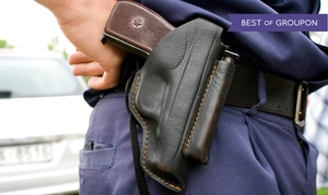 Safety Measures: License to Carry Class with Gun Rental for One or Two at Safety Measures (Up to 52% Off)