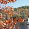 Family-Friendly New Hampshire Lodge near Lake
