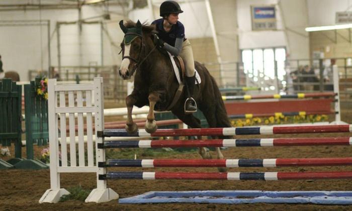 Jaax, Llc - Gypsum: Two Horseback-Riding Lessons at Jaax, LLC (65% Off)