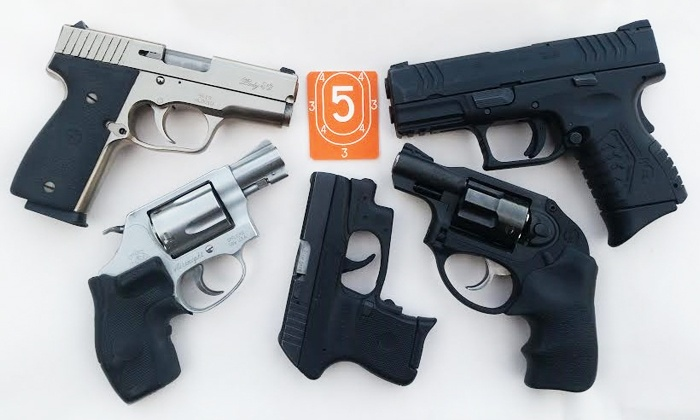 Denton County Sports - Lewisville-Flower Mound: Preparatory Clinic for Concealed-Handgun License Shooting Test for One or Two at Denton County Sports (50%Off)