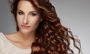 Gina Marie Hair Design: Single-Process Color Touch Up or Partial Highlights, or Full Highlights at Gina Marie Hair Design (56% Off)