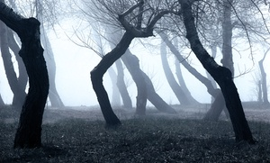 Spooks & Legends Haunted Tours: $16 for Choice of Tour for Two from Spooks and Legends Haunted Tours (Up to $28 Value)