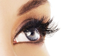 Lashholic: Holic Set of Synthetic Mink Lash Extensions with Optional Two-Week Refill at Lashholic (Up to 55% Off)