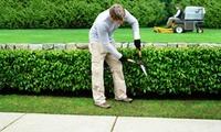 Je 1,5 oder 2,5 Stunden Hochdruckreinigung und Gartenarbeit von Steinreinigung Daniel (bis zu 62% sparen*)