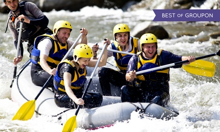 Half-Day Wild and Scenic Rafting Trip with Wetsuits for Two, Four, or Six from A1 Wildwater Rafting (35% Off)