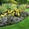 Up to 59% Off Mulch or Landscaping