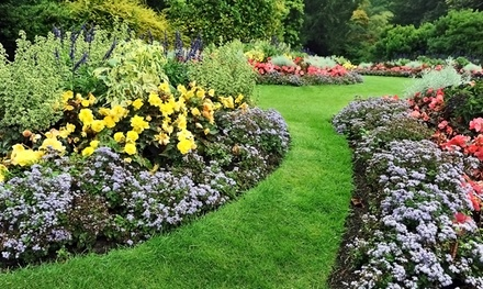 $12 for $24 Worth of Flowers, Shrubbery, Antiques and Garden Accessories