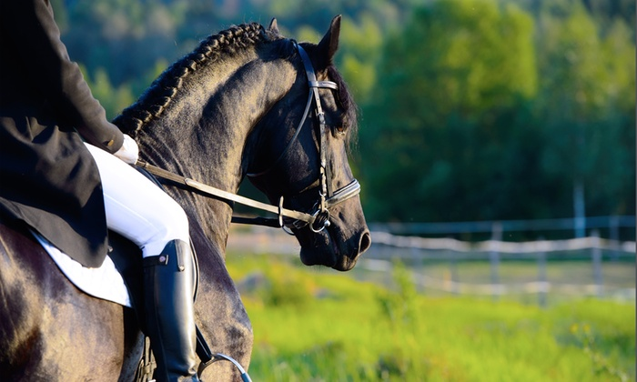 Ranch Capo Rama - Baglio Pietre Lunghe: 3 o 5 lezioni di equitazione con monta all'inglese anche con passeggiata a cavallo da 19 €