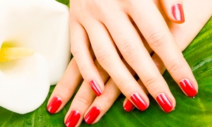The i-Bar: Shellac Manicure or Pedicure (£12) or Both (£22) at The i-Bar (Up to 45% Off)