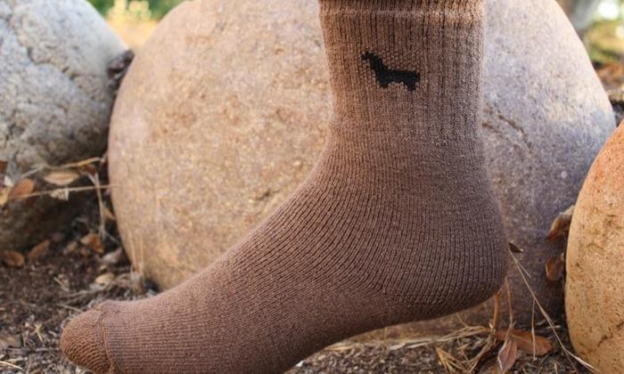 CasweckAlpacas & Gallery - Rockford: Custom Clothing and Accessories at Casweck Alpacas (46% Off)