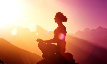 1 Monat Yoga Flat für alle Kurse bei Unit Yoga Hamburg für 29,90 € (70% sparen*)