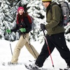Up to 53% Off Snowshoe Tour for Two or Four