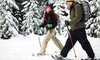 Whistler Blackcomb Snowmobile - Whistler Blackcomb Snowmobile - Snowshoe: Trappers Trail Snowshoe Tour for Two or Four from Blackcomb Adventures (Up to 53% Off)