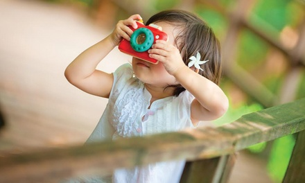 $20 for $30 Worth of Educational and Earth-Friendly Toys from PlanToys