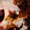 Up to 52% Off Admission to Fall Festival of Forks and Corks