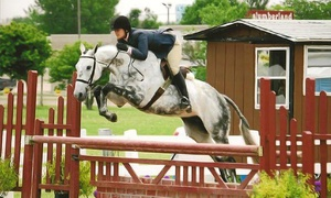 StoneCrest Farm: One or Four Private Riding Lessons for One, or One Semi-Private Lesson for Two (Up to 55% Off)