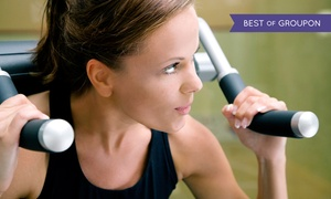 Sheraton Fitness: One-, Three-, or Six-Month Membership with Gym Access at Sheraton Fitness (Up to 87% Off)