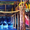 Up to Half Off Indoor Play-Space Day in Medina
