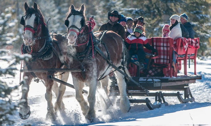 Sombrero Stables - Granby: Hot-Cocoa or Dinner Sleigh Ride for Two or Four at Sombrero Stables (Up to 52% Off)