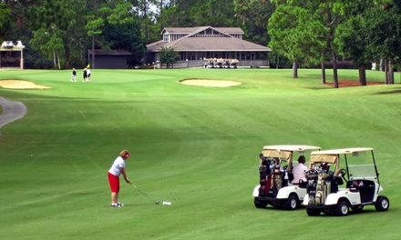 18 Holes of Golf and Lunch with Optional Return Round at Little Ocmulgee Wallace Adams Golf Club (Up to 58% Off)