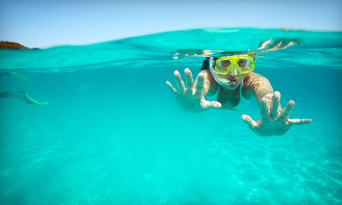 Underwater Safaris - Lakeview: Discover Scuba Class for One or Snorkeling Class for One or Two at Underwater Safaris (Up to 51% Off)