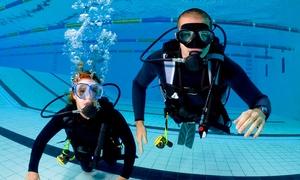 Delfinek Scuba: Nurkowanie: intro dla dziecka (od 89,99 zł) lub osoby dorosłej (od 99,99 zł) w szkole Delfinek Scuba – 2 lokalizacje
