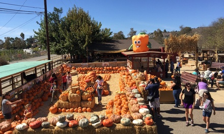 $27 for a Petting Zoo and Pumpkin Patch Package for Four People at Zoomars ($86 Value)