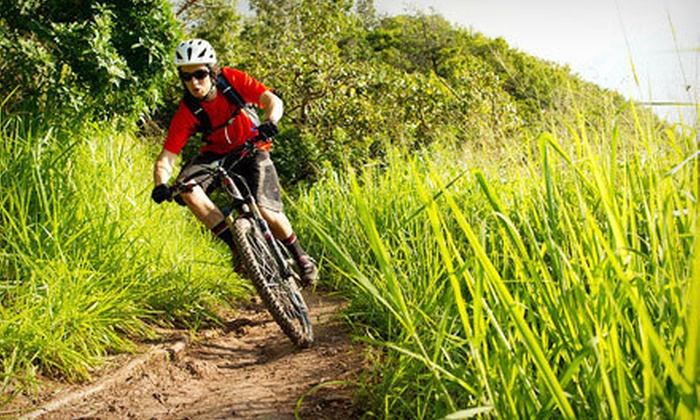 Top Gear Bicycle Shop - Multiple Locations: Bike Tune-Up at Top Gear Bicycle Shop (Up to 54% Off). Two Options Available.
