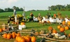 Crawford Pumpkin Farm - West Louisville: Family Fun Night Pass for Four with Optional Daytime Visit at Crawford Pumpkin Farm (Up to 40% Off)