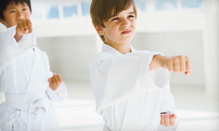 Martial Arts America - Multiple Locations: $98 for Two Months of Kids' Martial-Arts Classes at Martial Arts America ($249 Value). Seven Locations Available.