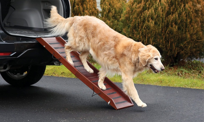 Pet Store Expandable Wooden Pet Ramp: Pet Store Expandable Wooden Pet Ramp. Free Shipping and Returns.