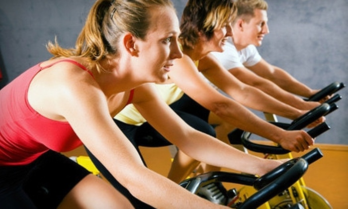 Morton Grove Park District - Morton Grove: $40 for a Three-Month Gym Membership from Morton Grove Park District (Up to $108 Value)